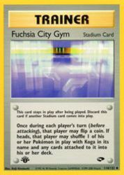 Fuchsia City Gym