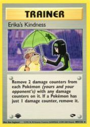 Erika's Kindness