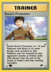 Brock's Protection