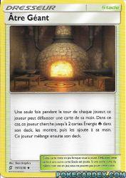 197 carte 197